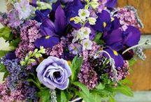 Lovely Lisianthus / Lisianthus oftewel de Eustoma. Meer dan een zomerbloem alleen...