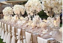 Wedding Ideas / by Jess Lawson