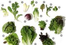 Healthy Recipes - Salad / Salad Recipes / by Dawn Crescimone | ! A Permanent Health Kick ! - Healthy Food Recipes and Fitness Community