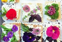 Recipes - Foccacia, Pizza and Savoury Tarts / by Dawn Crescimone | ! A Permanent Health Kick ! - Healthy Food Recipes and Fitness Community