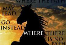 Horse Energy / by Kimberly Palazzi