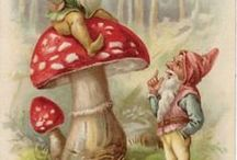Gnomes and Elves