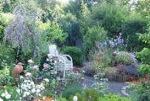 Gartenzeit / mein Garten, ist meine Zuflucht, meine Auszeit, meine kleine Wohlfühhloase.