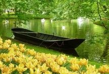 """The """" MAGIC OF NATURE"""" / Magical beauty ALL around! Nature @ it's BEST!"""