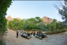 Zion National Park Wedding-Luke and Rebecca / Zion National Park Wedding Virgin River Banks / by Forevermore Events /Laura Stagg