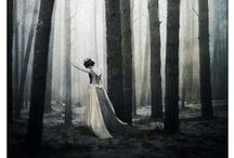 Into the Woods / by Kelsey Nichols