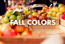 Fall Colors / by Biotherm