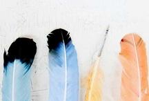 Dyable / by Mandi C