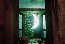 Magical Life / by Brandi Remington