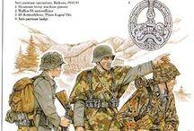 1933 - 1945 German Uniforms & Insignia / by Sarah db