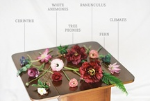 Flowers by Name