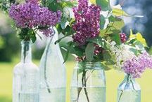 Flower Displays / by NancyC