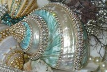 Treasures From The Sea / Lovely shells from the sea........ / by Stephanie Miceli