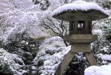 Winter in the Garden / Snow on bare branches, sleeping koi, and rain-soaked gravel ripples. Portland's winter is long, dark, and inspiring—perfect for visitors who want a one-of-a-kind experience of the Garden.  https://japanesegarden.org/