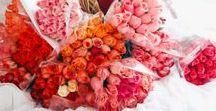 Saint Valentin ❤ / Des idées originales pour célébrer votre amour et faire preuve de romantisme !  #ValentinesDay