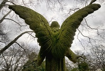Heavenly Host / A collection of anything angelic :-). / by Tricia Russell