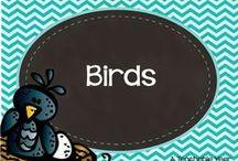 Birds / by Ana Capurro