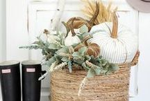 Fall & Thanksgiving Decor & More / Fall - Autumn decorating, DIY projects, recipes, Thanksgiving decor, tablescapes, front porches, planters and more!