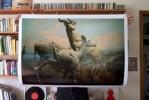 Poster Love / by Adel Zeller