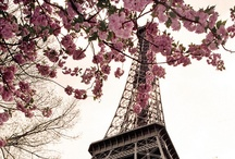Paris - My favorite city / by Lily Fisher