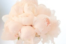 Flower Love / Beautiful flowers and bouquets for your party and wedding table.