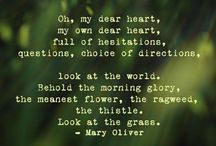 Mary Oliver / by Jill Marie Greenhill
