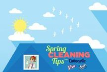 Spring Cleaning Tips and Ideas for Home / Spring Cleaning Tips and Ideas for Home