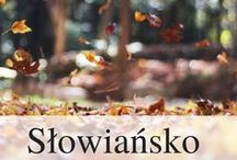 Slavic / Slavic religion, history, art