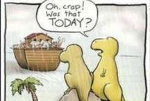 Amusing Pictures