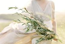 weddings / by Natasha Lowe