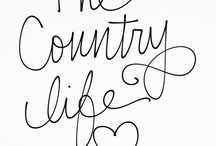 Country life / by Rebecca Meadley