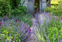 Incredible border planting / Incredible border planting and design ideas to inspire gardeners. How to build a garden border. Planting advice and garden design.