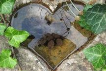 Ponds and Water Features / Garden ponds and water features. Everything from rain chains to fountains - water in the garden.
