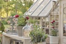 Sheds and Summerhouses / Incredible garden sheds and luxury summerhouses, gazebos and garden buildings. Get inspired by pretty potting sheds!