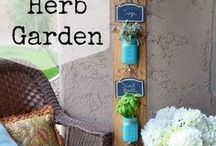 Great ideas for Gardening on a budget / Great ideas for people who don't have a big budget to garden with.