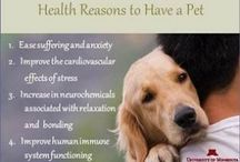 Pet Therapy / An animal can help you overcome your illness or depression