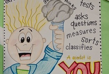 First Grade Science / by The Classroom Creative