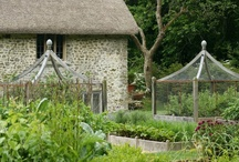 Dream Home ~ Potager / Design elements, plants, resources. / by Kate Wynn