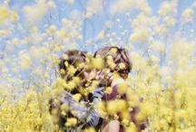 people & blossom