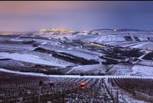 Janvier 2014 / Bonne année à tous les WineChicTravellers !