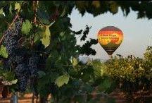 Oenoloisirs / Les loisirs du vin - WineChicTravel vous propose une manière ludique de découvrir les domaines viticoles français et de déguster les vins à travers un panel de loisirs selon les envies de chacun.