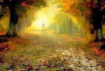 Autumn / My Autumn loves