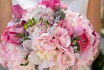 Wedding Love / by Christy Bench-Walter