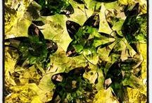 Kartell loves Green / by Kartell Official