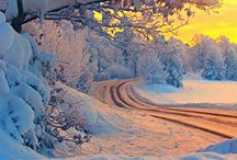 Snow Wonderful / Beautiful Snow Scenery / by Sally Branderhorst