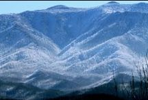 Gatlinburg Attractions / Some of the best attractions in Gatlinburg, TN. http://www.CabinsOfTheSmokyMountains.com  / by Cabins Of The Smoky Mountains