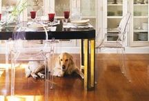 Kartell loves Pets / by Kartell Official