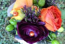 Petaluna Designs Floral Artistry / This is my love, my passion. I do weddings and event flowers. / by Christy Bench-Walter
