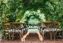 All Weddings Everything! / by Hannah Thomas