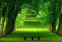 Beautiful Lawns & Landscapes